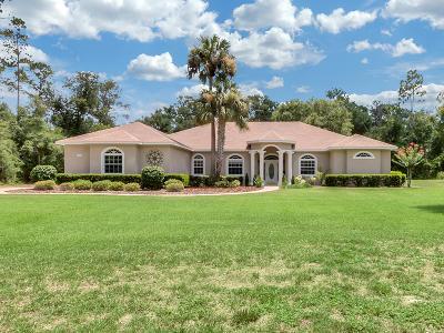 Deland  Single Family Home For Sale: 1930 Glenwood Oaks Lane