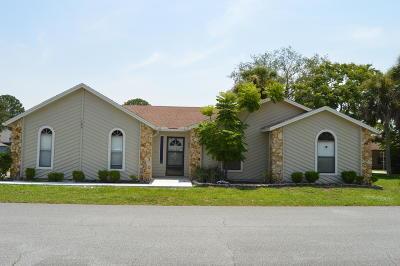 Daytona Beach Single Family Home For Sale: 100 Spoonbill Court