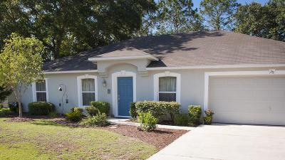 Palm Coast Single Family Home For Sale: 20 Ryley Lane