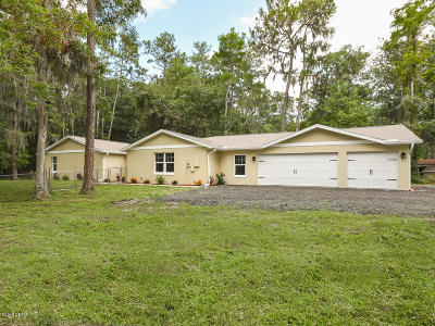 Port Orange Single Family Home For Sale: 2131 Halifax Drive