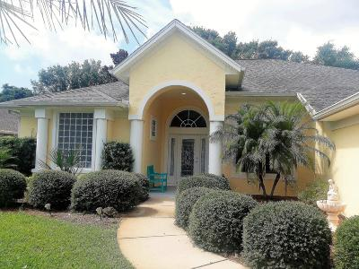 Ormond Beach Single Family Home For Sale: 10 Moonglow Drive