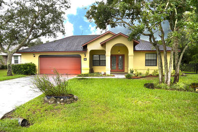 Palm Coast Single Family Home For Sale: 23 Freemont Turn