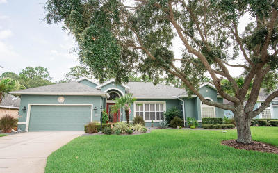 Ormond Beach Single Family Home For Sale: 34 Meadow Brooke Lane