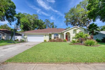 Port Orange Single Family Home For Sale: 6160 Half Moon Drive