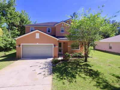 Palm Coast Single Family Home For Sale: 82 Point Pleasant Drive