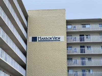 Volusia County Rental For Rent: 145 N Halifax Avenue #802