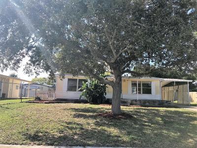 Port Orange Single Family Home For Sale: 228 Sand Pebble Circle