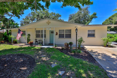 Ormond Beach Single Family Home For Sale: 358 S Orchard Street