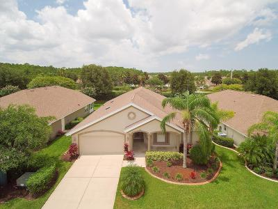 Port Orange Single Family Home For Sale: 1467 Areca Palm Drive