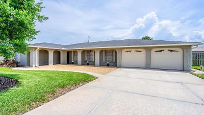Ormond Beach Single Family Home For Sale: 142 Sandcastle Drive
