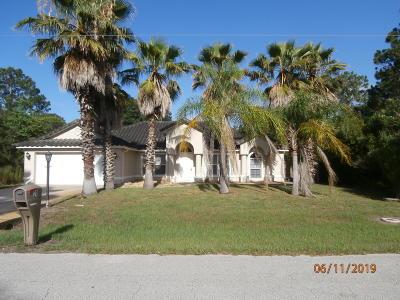 Palm Coast Single Family Home For Sale: 21 Whittington Drive