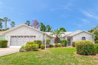 Palm Coast Single Family Home For Sale: 135 Parkview Drive