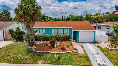 Ormond Beach Single Family Home For Sale: 122 Lynnhurst Drive