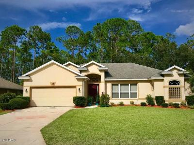 Volusia County Single Family Home For Sale: 33 Black Creek Way