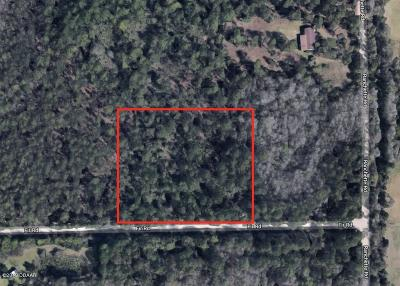 Volusia County Residential Lots & Land For Sale: 4503 Ranchette Road