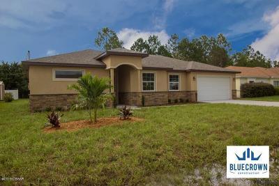 Palm Coast Single Family Home For Sale: 53 Felwood Lane
