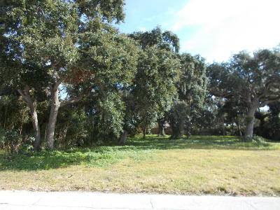 Volusia County Residential Lots & Land For Sale: 507 S Pine Street