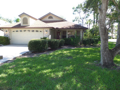 Port Orange Single Family Home For Sale: 3249 Vail View Court