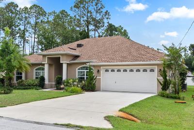 Palm Coast Single Family Home For Sale: 27 Ethan Allen Drive
