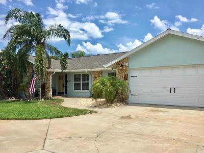 Ormond Beach Single Family Home For Sale: 252 Ellicott Drive