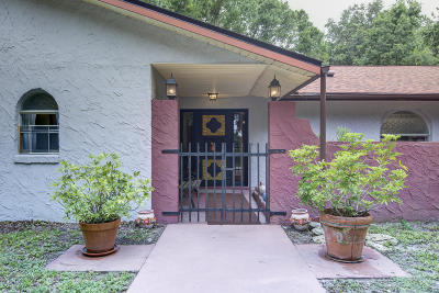 Edgewater Single Family Home For Sale: 1870 S Air Park Road