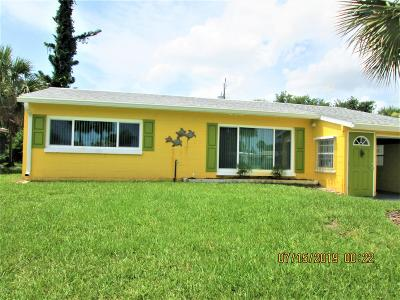 Ormond Beach Single Family Home For Sale: 110 Brendale Drive