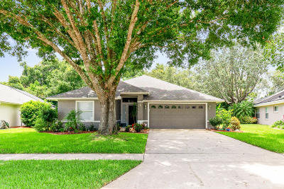 Pelican Bay, Ashton Lakes, Cypress Head, Sabal Creek, Sanctuary On Spruce Creek, Spruce Creek Fly In, Villages Of Royal Palm, Waters Edge Single Family Home For Sale: 6138 Jasmine Vine Drive