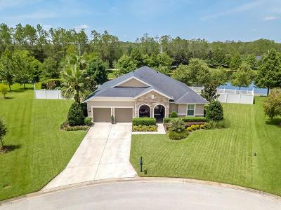 Hunters Ridge Single Family Home For Sale: 4 Abacus Avenue