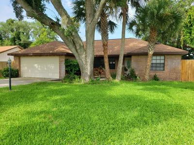 Port Orange Single Family Home For Sale: 740 Merrimac Drive