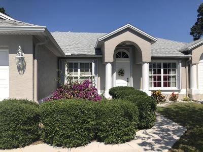 Palm Coast Single Family Home For Sale: 73 Princeton Lane