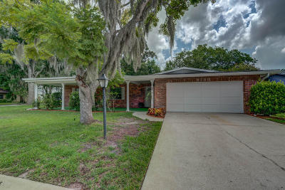 Port Orange Single Family Home For Sale: 3730 Paige Street