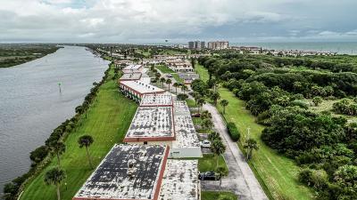 Flagler Beach Condo/Townhouse For Sale: 16 Ocean Palm Villas S