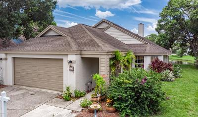 Daytona Beach Single Family Home For Sale: 568 Crooked Stick Drive