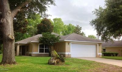 Ormond Beach Single Family Home For Sale: 29 Sherrington Drive