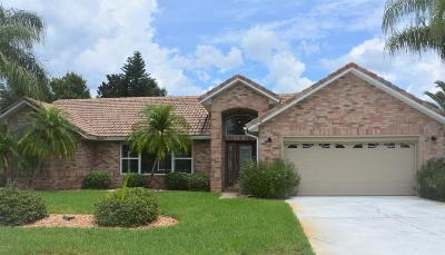 Port Orange Single Family Home For Sale: 5791 Falling Tree Lane