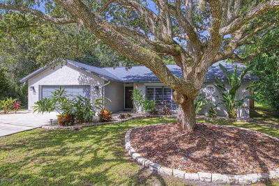 Ponce Inlet Single Family Home For Sale: 4765 S Peninsula Drive