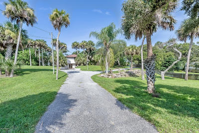 Daytona Beach Single Family Home For Sale: 2752 S Peninsula Drive