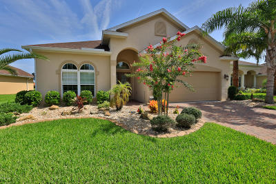 Palm Coast Single Family Home For Sale: 144 Arena Lake Drive