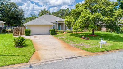 Ormond Beach Single Family Home For Sale: 24 Coquina Point Drive
