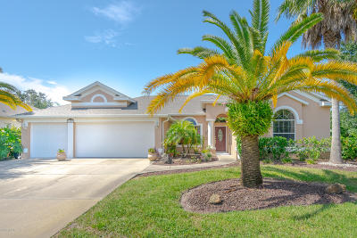 Port Orange Single Family Home For Sale: 1419 Richel Drive