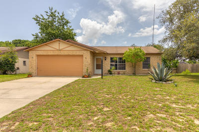Port Orange Single Family Home For Sale: 1124 Viking Drive