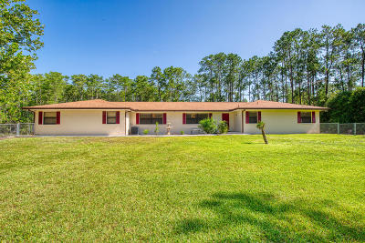 Ormond Beach Single Family Home For Sale: 3626 Conifer Lane