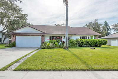 Port Orange Single Family Home For Sale: 5935 Peggy Drive