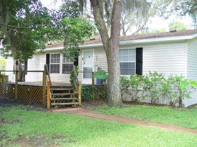 Port Orange Single Family Home For Sale: 620 Vaughn Road
