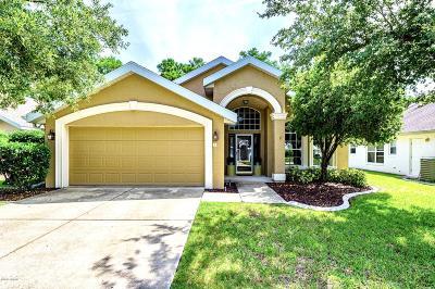 Daytona Beach Single Family Home For Sale: 7 Whistling Duck Court