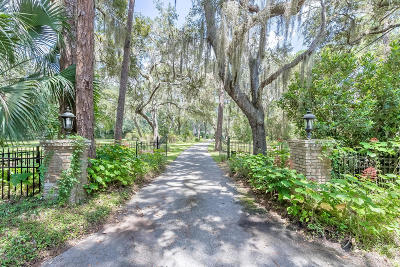 Volusia County Single Family Home For Sale: 2121 Hontoon Road
