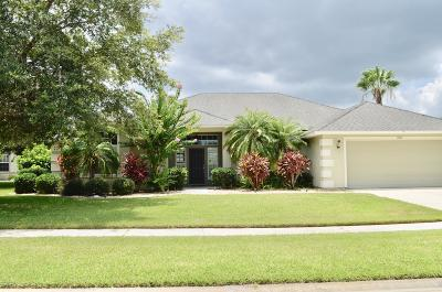 Volusia County Single Family Home For Sale: 1706 Destino Court