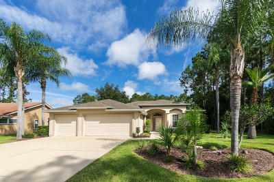 Palm Coast FL Single Family Home For Sale: $262,000