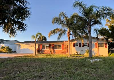 Volusia County Single Family Home For Sale: 85 Banyan Drive