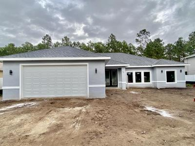 Volusia County Single Family Home For Sale: 45 Chrysanthemum Drive